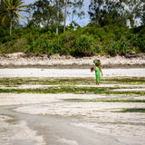 La gente di Zanzibar Fotografie Stock