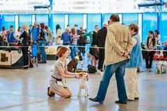 La gente ed i cani visitano la mostra - esposizione canina internazionale, importazione Immagine Stock Libera da Diritti