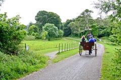 La gente en una calesa en Muckross parquea, Killarney, Irlanda Imagen de archivo