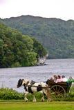 La gente en una calesa en Muckross parquea, Killarney, Irlanda Imagen de archivo libre de regalías