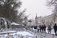 La gente está caminando en ciudad vieja en Tallinn Fotografía de archivo libre de regalías