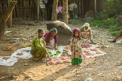 La gente in Etiopia Fotografia Stock