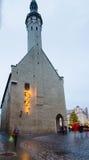 La gente gode del mercato di Natale a Tallinn Immagini Stock Libere da Diritti