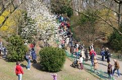 La gente gode di domenica soleggiata al giardino botanico a Kiev fotografie stock libere da diritti