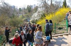 La gente gode di domenica soleggiata al giardino botanico a Kiev immagini stock libere da diritti