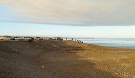La gente guarda le balene alla spiaggia di EL Doradillo vicino alla baia di Puerto Madryn Fotografie Stock Libere da Diritti
