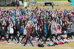 La gente hacia arriba saluda actitud en clase al aire libre grande de la yoga Fotos de archivo libres de regalías