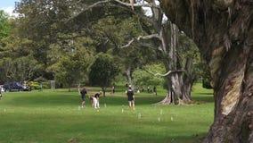 La gente joven juega croquet en el parque Auckland Nueva Zelanda de Cornualles metrajes