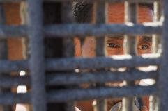 La gente messicana incontra le loro famiglie nel parco internazionale di amicizia immagini stock libere da diritti