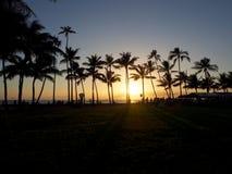La gente mira puesta del sol dramática el caer detrás del océano a través de árboles de coco en la playa de Kaimana imagenes de archivo