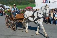 La gente monta el carro tradicional del caballo en el festival anual del queso en el emmental de Affoltern Im, Suiza fotos de archivo libres de regalías
