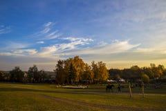 La gente monta i cavalli e si rilassa nel bello campo all'aperto, surr Fotografia Stock Libera da Diritti