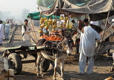 La gente nel Pakistan Immagine Stock
