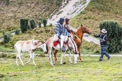 La gente nell'Ecuador Immagini Stock