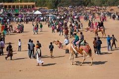 La gente nella folla si diverte con i cammelli sul festival del deserto Fotografia Stock