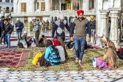 La gente prega nel Harimandir Sahib al compl dorato del tempio Fotografia Stock