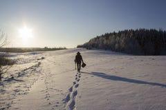 La gente profila nel campo di nevicata vicino ad abete Forest Sun Winter Fotografia Stock Libera da Diritti