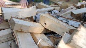 La gente raccoglie a mano su raccoglie la legna da ardere per l'ustione stock footage