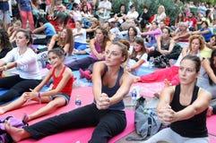 La gente realiza el entrenamiento de la yoga Fotografía de archivo libre de regalías