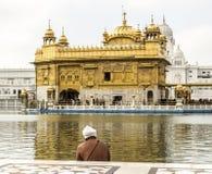 La gente ruega en el Harimandir Sahib en el compl de oro del templo Foto de archivo