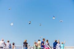 La gente se coloca en el transbordador y mira el fondo del cielo azul de las gaviotas Imagenes de archivo