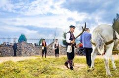 La gente si è vestita in vecchi vestiti di ethno a riso manuale che raccoglie la manifestazione facendo uso dell'animale del cava Immagine Stock Libera da Diritti