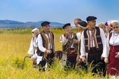 La gente si è vestita in vecchi vestiti di ethno a riso manuale che raccoglie la manifestazione il giorno soleggiato Fotografie Stock
