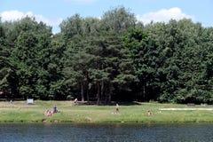 La gente si rilassa nel ` naturale e storico diKuzminki-Lublino del ` del parco fotografie stock libere da diritti