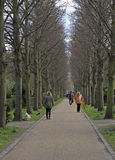 La gente sta camminando in parco pubblico di Copenhaghen Fotografia Stock Libera da Diritti