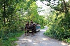 La gente sul vagone del cavallo Immagine Stock
