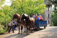 La gente sul vagone del cavallo Fotografie Stock Libere da Diritti