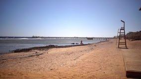 La gente sulla vacanza riunisce le conchiglie sulla spiaggia e prende i bagni del sole video d archivio