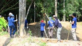 La gente tailandesa que el voluntario hace la sal se lame para los animales come en el bosque de PanoenThung almacen de metraje de vídeo
