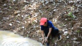 La gente tailandesa que el voluntario hace la sal se lame para los animales come en el bosque de PanoenThung almacen de video