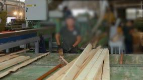 La gente trabaja en una fábrica de carpintería, trabajo sobre un transportador, fábrica de carpintería moderna metrajes