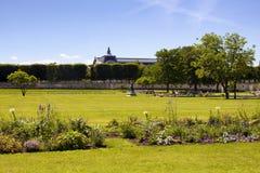 La gente va in giro al DES Tuileries di Jardin a Parigi immagine stock libera da diritti
