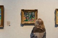 La gente visita el museo de arte metropolitano en Nueva York Fotografía de archivo
