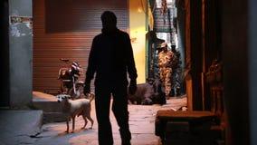La gente y los animales en la calle pasan en Varanasi en noche almacen de video