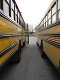 La geometria dei bus Fotografie Stock