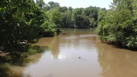 La Georgia, parco della riva del fiume, A zumma su grande insenatura mentre sfocia nel Chattahoochee River archivi video