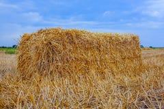 La gerbe de foin, une forme rectangulaire est la pente, un champ de blé photo libre de droits