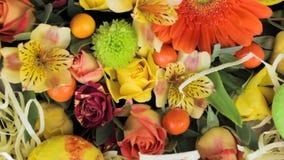 La gerbera, le rose ed altri fiori stanno girando, primo piano archivi video