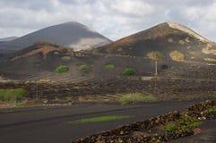La Geria -兰萨罗特岛 免版税库存照片