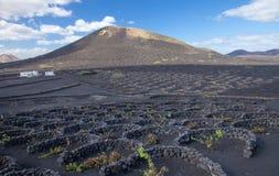 La Geria, Lanzarote, kanariefågelöar arkivfoton