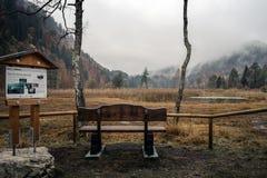 La GERMANIA, Alpsee Lago alpino Schwansee Immagine Stock Libera da Diritti
