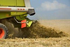 La Germania, Baviera, mietitrebbiatrice che raccoglie grano Immagini Stock Libere da Diritti