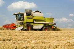 La Germania, Baviera, mietitrebbiatrice che raccoglie grano Fotografia Stock Libera da Diritti