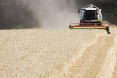La Germania, Renania settentrionale-Vestfalia, mietitrebbiatrice nel campo di grano Immagine Stock