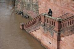 La Germania sotto acqua Fotografia Stock Libera da Diritti