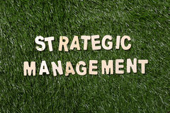 La gestion stratégique en bois se connectent l'herbe Image stock